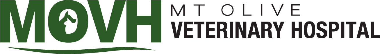 Mt. Olive Veterinary Hospital